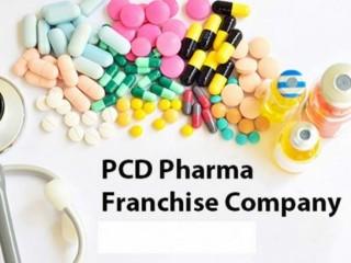 Pharma Franchise PCD Company