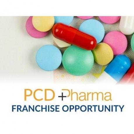 PCD Pharma Franchise Company in Ambala 1