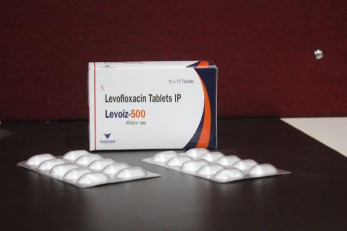 Levofloxacin .500 1