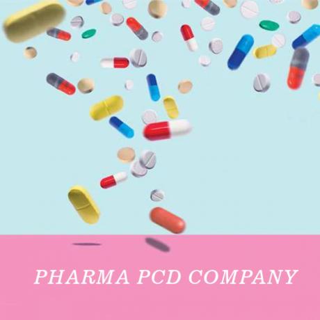 Panchkula Based Pharma PCD Company 1