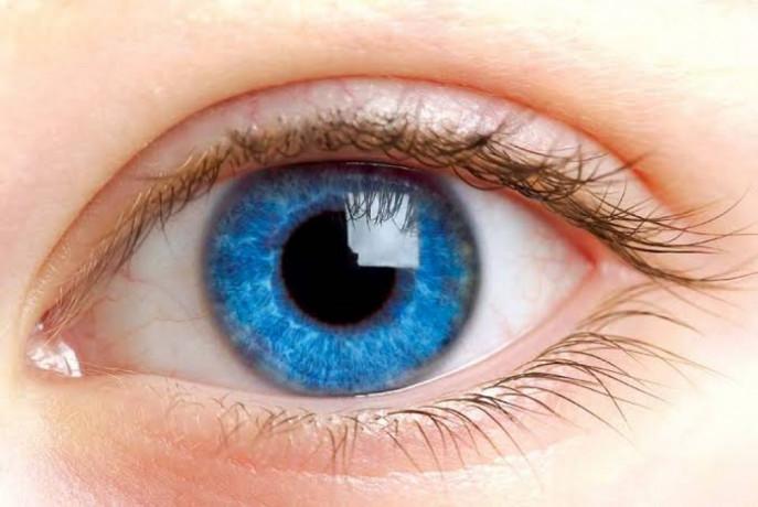 Eye Drops Manufacturer in Haryana 1
