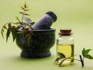 Ayurvedic Pain Oil Manufacturing Company
