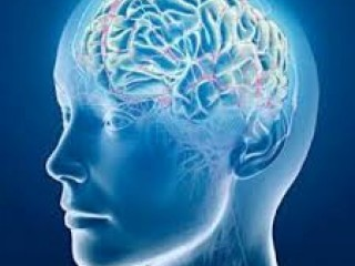Neurology Medicines Manufacturers