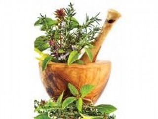 Ayurvedic Third Party Manufacturer in Haryana