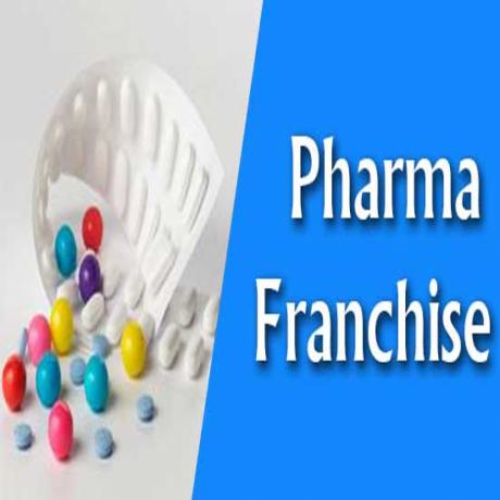 Pharma Franchise in Manimajra 1
