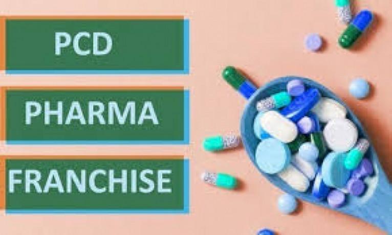 Haryana Based PCD Franchise Company 1