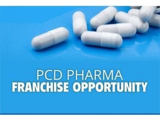 PCD Franchise Company in Ambala