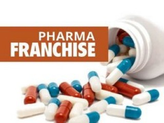 Best Pharma Franchise Company