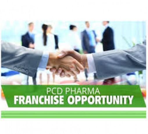 PCD Franchise in Haryana 1