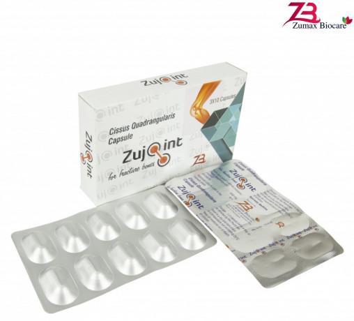 Cissus Quadrangularis 500 mg 1