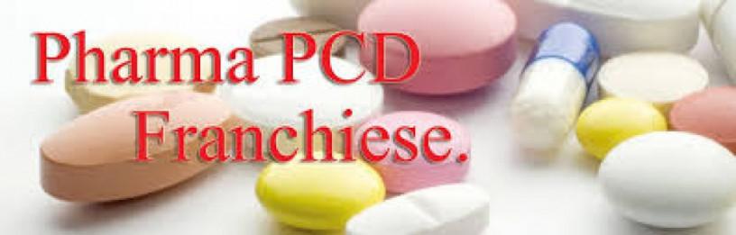 PCD Franchise Company in Haryana 1