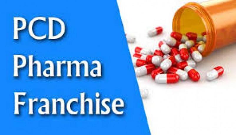 Looking for pcd pharma franchise in tamil nadu 1