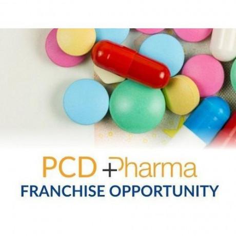 Pharma Franchise Distributor Company 1