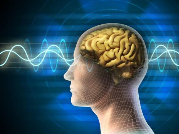 Neuro Psychiatric Pharma Franchise Comapny 1