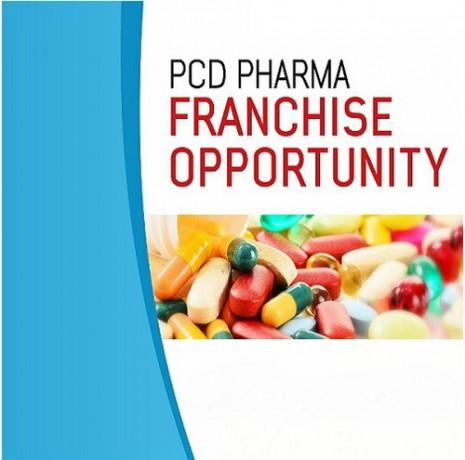 PCD Pharma Distributor Company 1
