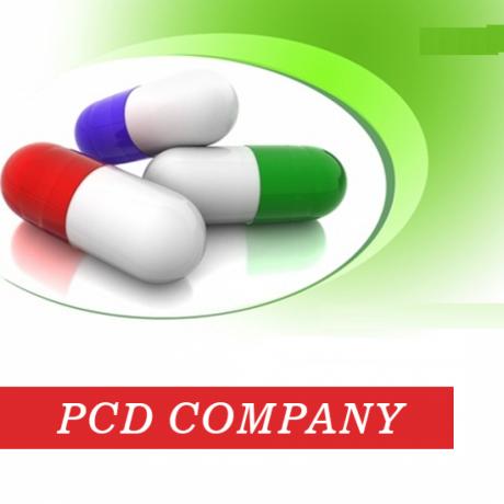 Top PCD Pharma Company in Delhi 1
