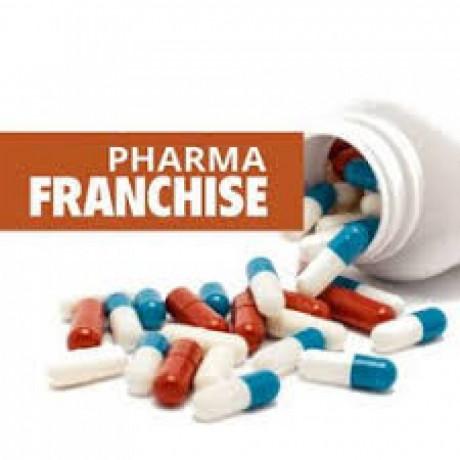Delhi Based Pharma Franchise Company 1