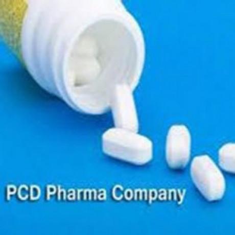 PCD Company in Delhi 1