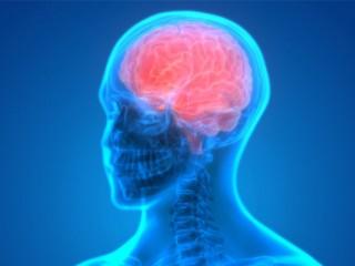 Neuropsychiatry Product Franchise