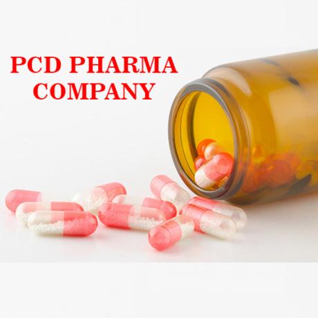 Haryana Based PCD Pharma Company 1